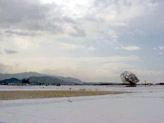 雪明けの午前、会社の前